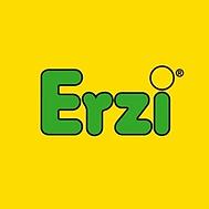 erzi_logo_-_Google_Search_1200x1200.png.