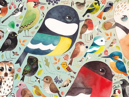 Ravensburger Our British Birds 500pc Jigsaw Puzzle