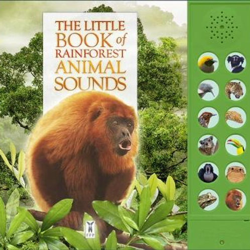 Books - Sound Book Rainforest
