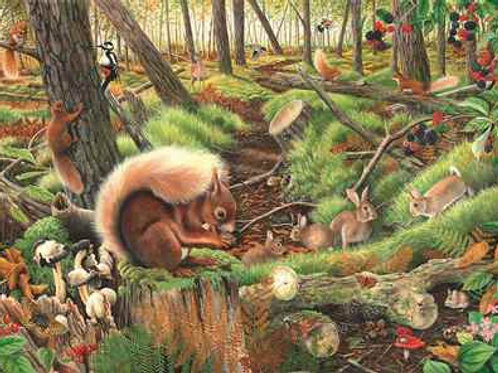 The House of Puzzles - Save Our Squirrels - 1000 piece Jigsaw