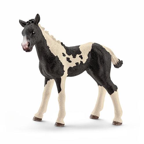 Schleich Pinto Foal