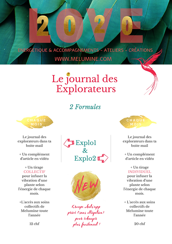Copie de Le journal des explorateurs-7.p