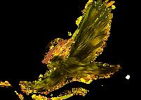 bird-4558536_1920.png