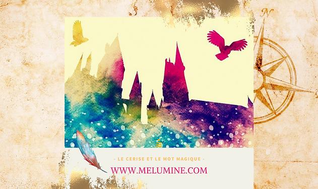Copie de www.melumine.com-8.png