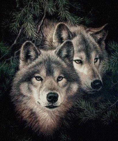 Картина в багете. Волки 800*500 мм