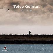 TOIVOquintet-View.jpg