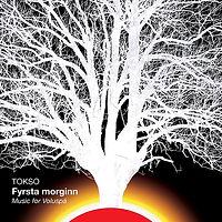 TOKSO-FyrstaMorginn_MusicForVoluspa.jpg