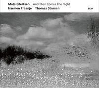 EILERTSENmats-AndThenComesTheNight.jpg