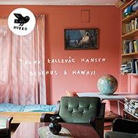 HANSEN-TrondKallevag-Bedehus-et-Hawaii.j