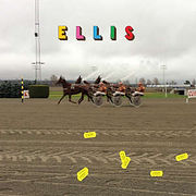 ELLIS-HverdagEtFest.jpg