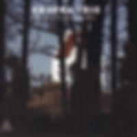 KRUPKAtrio-HymnsinAJazzMoodVol2.jpg