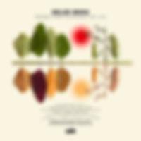 IBERGhelge-SongsFromThePlanetOfLife.jpg