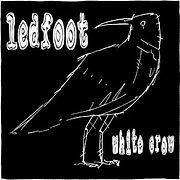 LEDFOOT-WhiteCrow.jpg