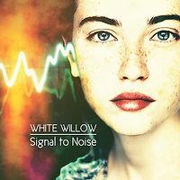 zWHITEwillow-SignalToNoise.jpg