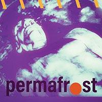 PERMAFROST-Permafrost.jpg