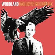 WOODLAND-BadDaysInDisguise.jpg