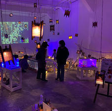 『山古志の錦鯉の展示』長岡大学