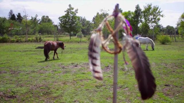 Rueda Medicinal asistida por caballos