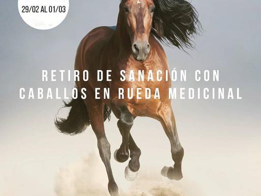 Retiro de Sanación con caballos en Rueda Medicinal