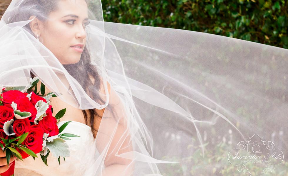 Bridal portrait with long veil