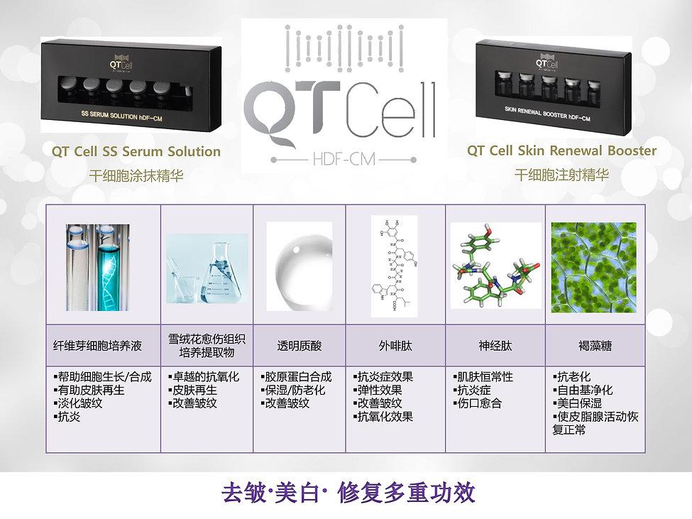 QT CELL-1.jpg