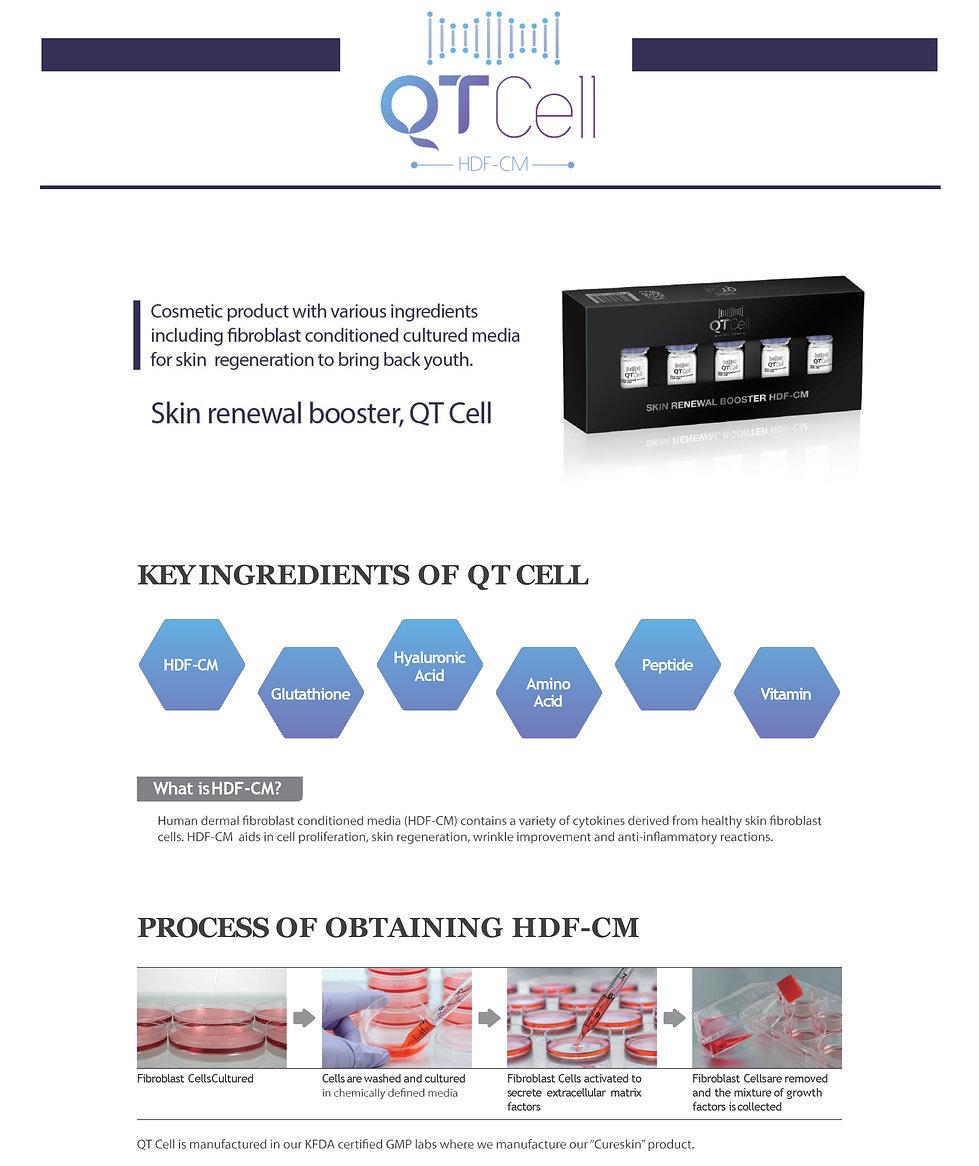 QTCELL 2P (영문)-1.jpg