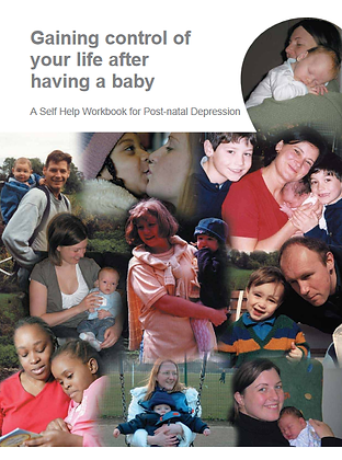 Gaining Control of Your Life After Having A Baby: A Self-Help Workbook