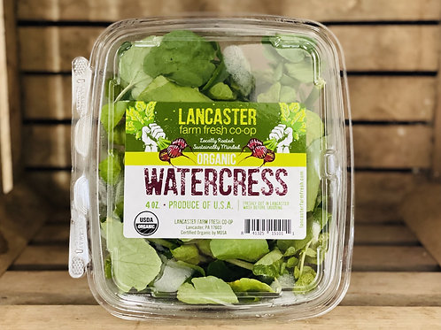 Young greens - Watercress