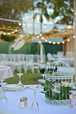 timms wedding (65).JPG