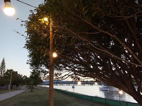Pole for Festoon Lighting String