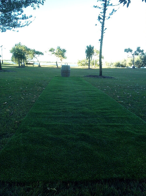 Fake artificial astro turf grass roll - 10 metres