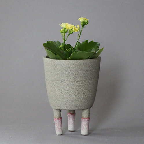 Small planter with pink socks