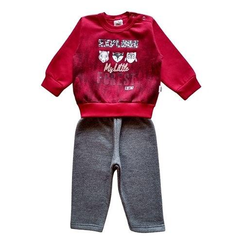 Conjunto Infantil Menino - My Little - Vermelho - Elian