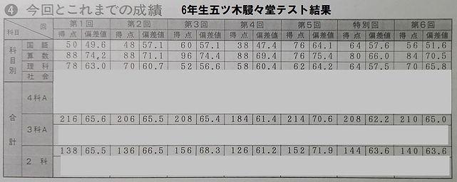 五木テスト結果c.jpg