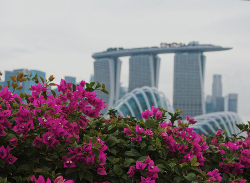Pros and Cons of living in Singapore As An Expat
