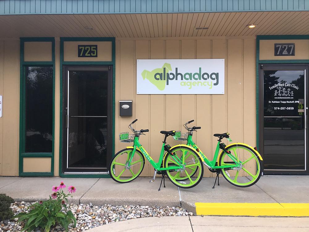 LimeBikes Outside Of Alpha Dog Agency