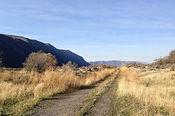 Polouse Trail 3.JPG