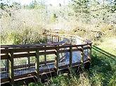 Carpenter Lake 1.JPG
