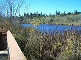 Carpenter Lake 2.JPG