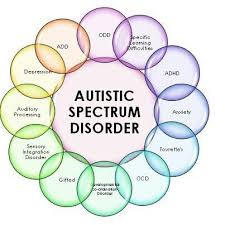 Autism:  New Insights