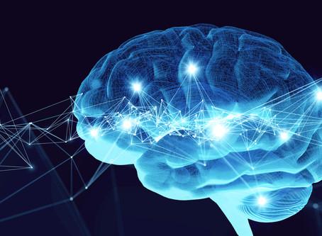 Mechanism for Trauma Memory Identified