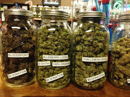 Cannabis Decriminalized:  What Does The Research Tell Us?