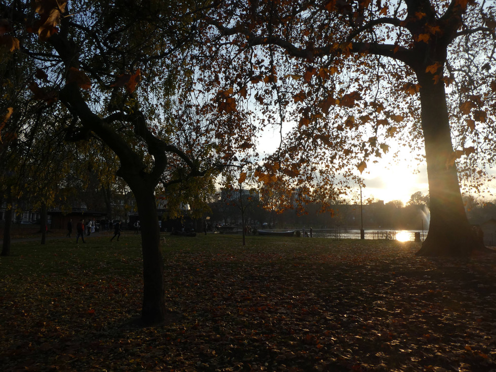 Daily musings: Why autumn is my favourite time of year