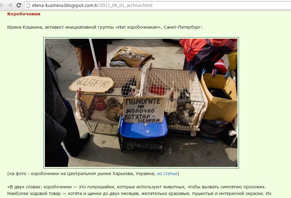 hayvan-pazari-ukrayna.jpg