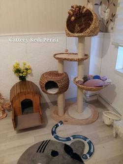 Kedi Tırmalama Platformları