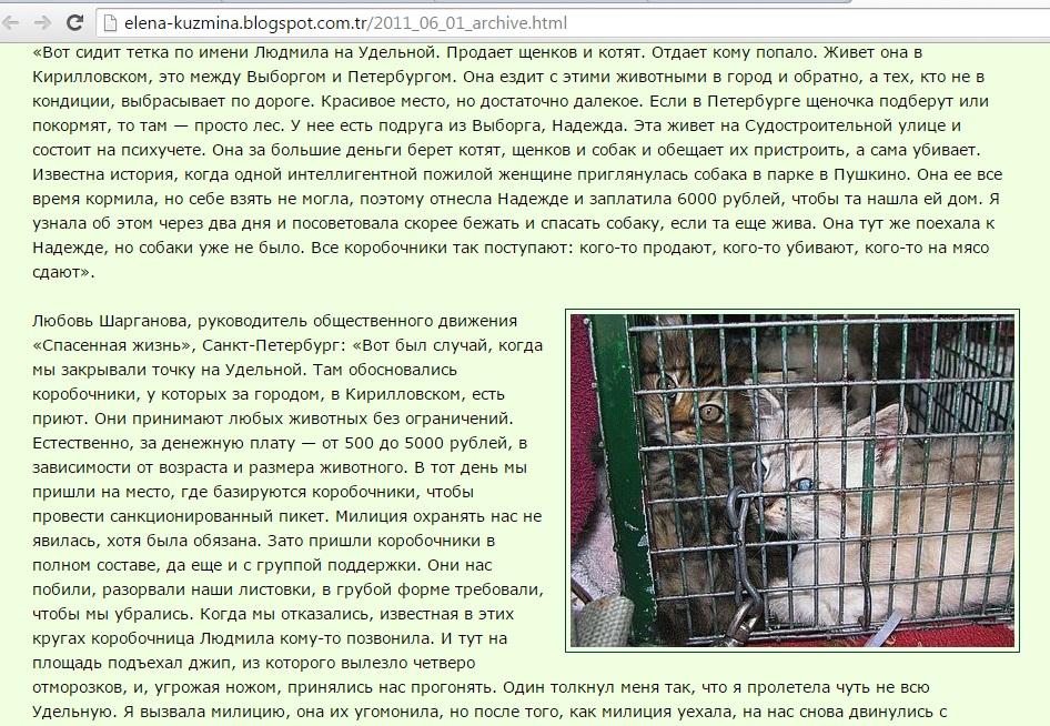 hayvan-pazari-ukrayna-4.jpg