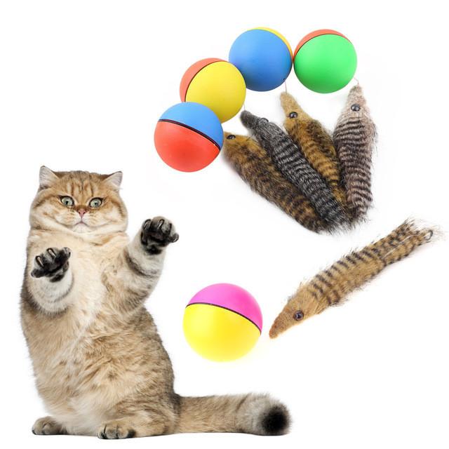 Kedi Maması & Kedi Kumu & Kum Kabı & Oyuncaklar & Yaş Mama