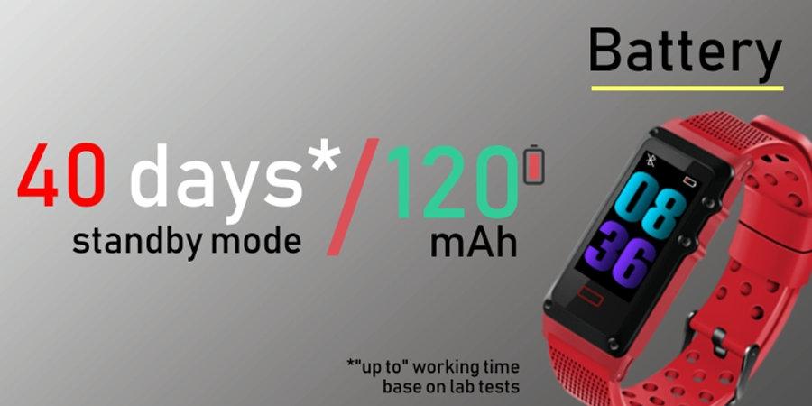 2-battery - new.jpg
