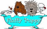 fluffy puppy 3.jpg
