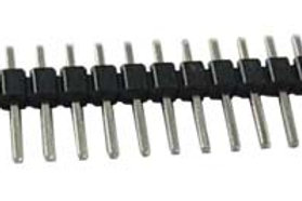 Burg Strip Male 40 pin.